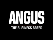 American Angus Association at Digital Animal Summit